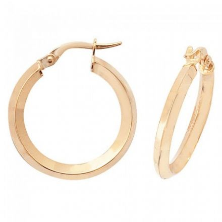 Just Gold Earrings -9Ct Earrings, ER873